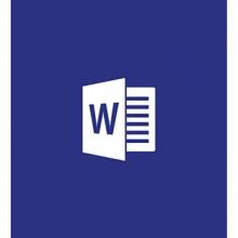 微软(Microsoft) 原装正版办公软件Office Word 2016 电子下载版 商业版for MAC平台